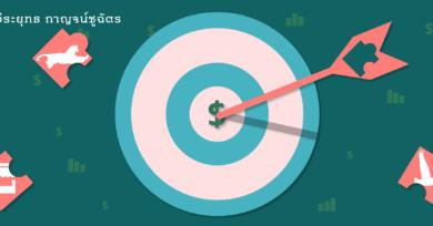สามยุทธศาสตร์ Catch-Up : ตลาดเสรี ฝูงห่านบิน และเสือกระโดด